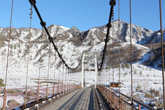 Ponte sospeso attraverso il fiume fra le montagne, Altai, Russia di Katun Fotografia Stock Libera da Diritti