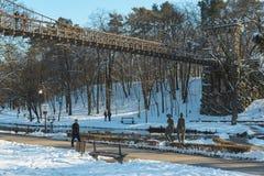 Ponte sospeso da Nicolae Romanescu Park Immagine Stock