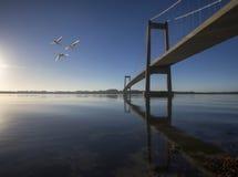 Ponte sospeso danese degli azzurri Fotografia Stock
