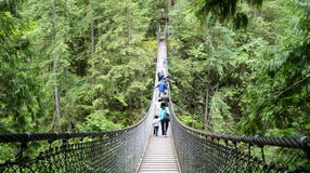 Ponte sospeso del canyon della Lynn fotografia stock