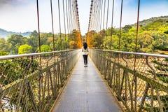 Ponte sospeso del cavo di Ezhattumugham-Thumboormuzhi, Kerala fotografia stock libera da diritti