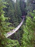 Ponte sospeso di Capilano Fotografie Stock