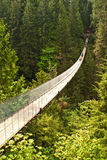 Ponte sospeso di Capilano nel Canada Fotografie Stock