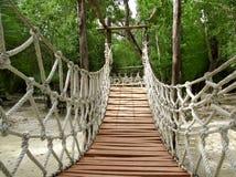 Ponte sospeso di legno della giungla della corda di avventura Immagini Stock Libere da Diritti