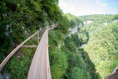 Ponte sospeso nel canyon di Okatse Immagini Stock