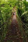 Ponte sospeso, riserva di Monteverde, Costa Rica Immagini Stock