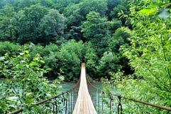 Ponte sospeso sopra gli altopiani del fiume Fotografia Stock