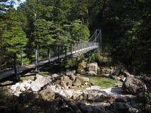 Ponte sospeso sopra la corrente del fiume Fotografie Stock Libere da Diritti