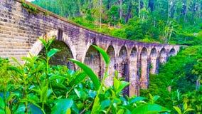 Ponte Sri Lanka dell'arco di Ella Nine immagini stock libere da diritti