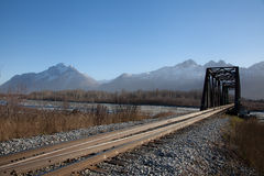 Ponte stretto della ferrovia Immagini Stock