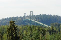 Ponte suspendida Fotografia de Stock