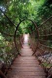 Ponte suspendida Imagem de Stock Royalty Free