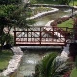 Ponte tropical do jardim Fotografia de Stock