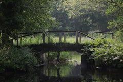 Ponte velha Fotos de Stock Royalty Free