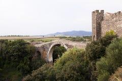 Ponte velha. Imagens de Stock Royalty Free