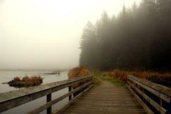 Ponte velha Foto de Stock
