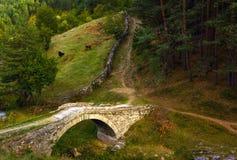 A ponte velha Foto de Stock Royalty Free