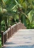 Ponte velha, de madeira Imagens de Stock Royalty Free