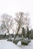 Ponte velha no parque do inverno fotografia de stock