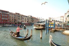 Ponte Veneza de Rialto Foto de Stock