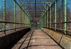 Ponte verde giù la rampa Fotografia Stock Libera da Diritti