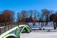 Ponte verde no parque do inverno de Moscovo imagens de stock