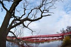 Ponte vermelha moderna e árvore estéril imagem de stock royalty free