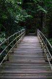 Ponte vicino alla cascata di Lumpee in Souther Tailandia Immagine Stock Libera da Diritti