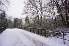 Ponte vuoto della neve nella città ed in molti alberi Immagini Stock