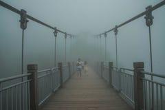 Ponte a zhangjiajie Fotografia Stock