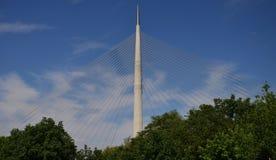 Pontes 11 de Belgrado Foto de Stock Royalty Free