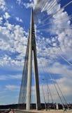 Pontes 22 de Belgrado Foto de Stock Royalty Free