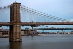 Pontes de East River em New York Imagem de Stock Royalty Free