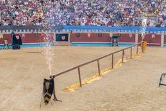 Pontevedra Hiszpania, Wrzesień, - 3, 2016: Festiwal średniowieczny rycerza turniej zdjęcia stock