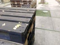 Pontevedra, Spanje; 08/09/2018: Schot van meubilair van pallets wordt gemaakt die stock fotografie