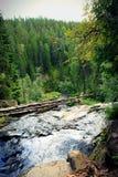 Ponti di bianco della cascata La Carelia, Russia Fotografia Stock