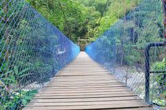 Ponti di legno alla cascata di Chamang Immagini Stock Libere da Diritti