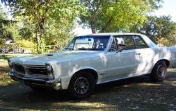 Pontiac blanco restaurado obra clásica GTO Fotografía de archivo libre de regalías