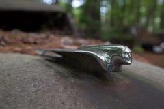 Pontiac dans la décharge Image stock