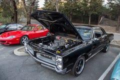 Pontiac GTO Royalty-vrije Stock Afbeeldingen