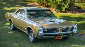 1966 Pontiac GTO Stock Photography