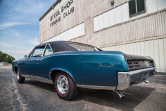 1967 Pontiac GTO Stock Images