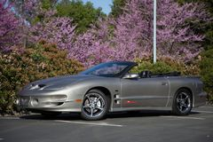2002 Pontiac Trans Am Firehawk Stock Photography