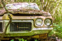 Pontiac Wrecked in Woods Royalty Free Stock Photo