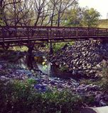 Ponticello in autunno Fotografie Stock