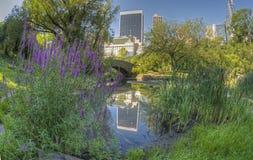 Ponticello Central Park, New York City di Gapstow Immagini Stock Libere da Diritti