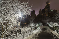 Ponticello Central Park, New York City di Gapstow Fotografie Stock Libere da Diritti