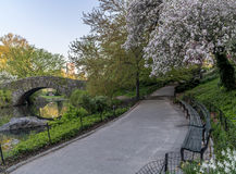 Ponticello Central Park, New York City di Gapstow Fotografia Stock