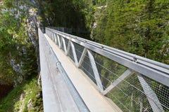 Ponticello d'acciaio nelle alpi, Germania Immagine Stock