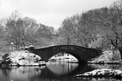 Ponticello del Central Park Fotografia Stock Libera da Diritti
